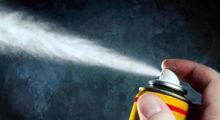 Чого бояться клопи: який запах відлякує комах