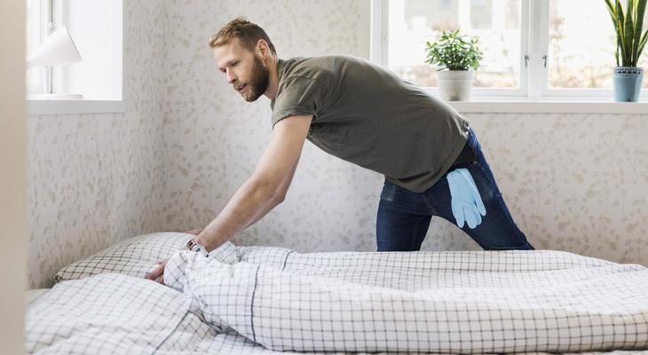 Як виглядають клопи домашні постільні, як вивести комах