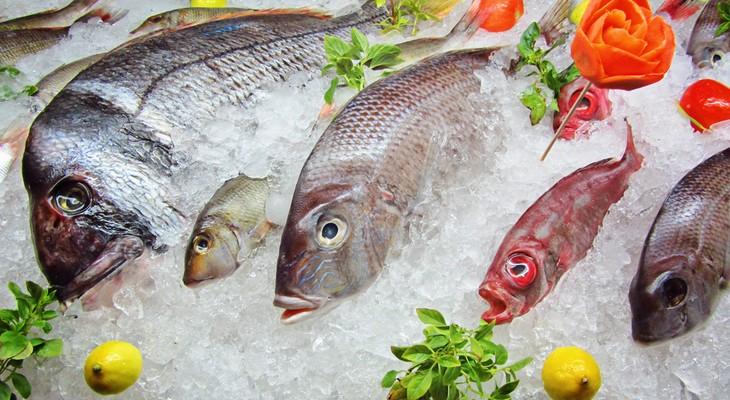 Скільки зберігати рибу в холодильнику в домашніх умовах