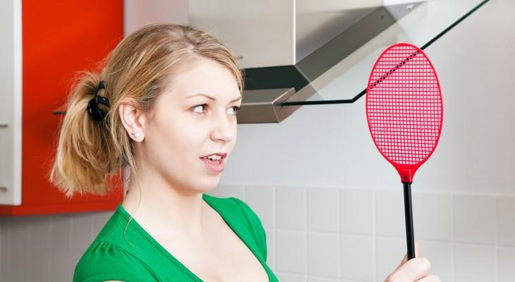 Як позбутися від мошок в квартирі: корисні поради
