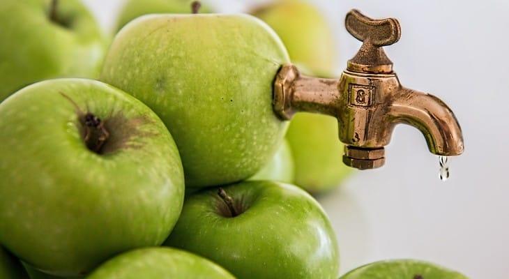 Соковижималка для яблук: як вибрати кращу модель