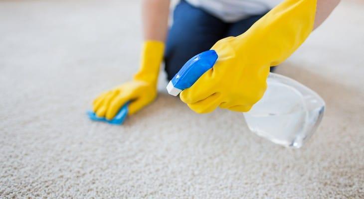 Чим і як почистити палас в домашніх умовах
