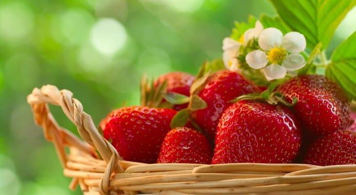 Як зберігати полуницю в холодильнику і морозилці в домашніх умовах