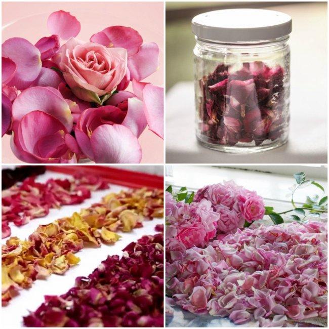 Як зберегти пелюстки троянди свіжими