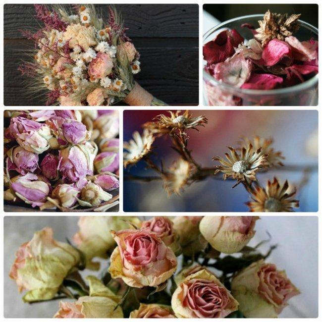 Як зробити композицію з сухих квітів