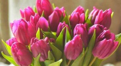 Оригінальні подарунки на 8 березня для дівчини, дружини, колеги, мами, бабусі