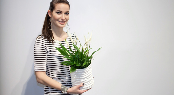 П'ять домашніх рослин, що поліпшують самопочуття і настрій