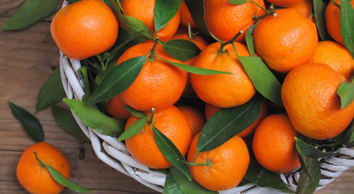 Зберігаємо мандарини в домашніх умовах
